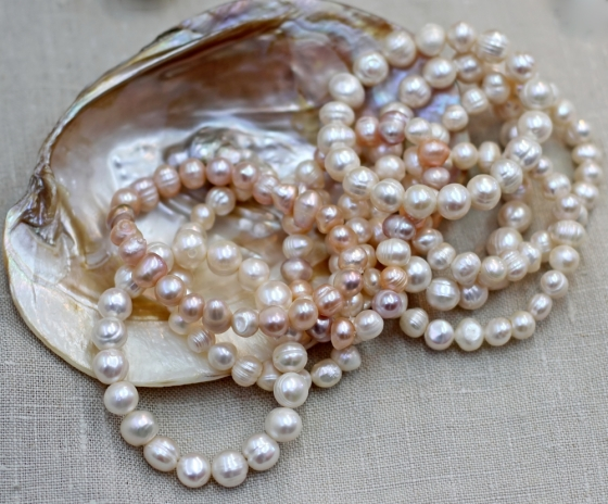Pearl necklaces in a shell