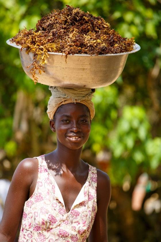 Young woman carrying basket of seaweed on her head