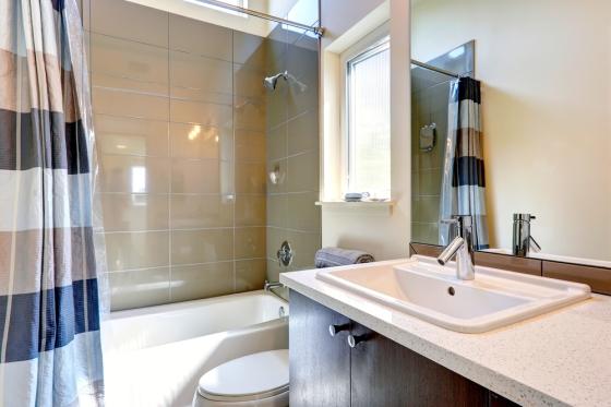 Guest bathroom interior