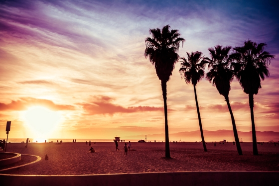 Beautiful picture of the Venice Beach, Los Angeles.