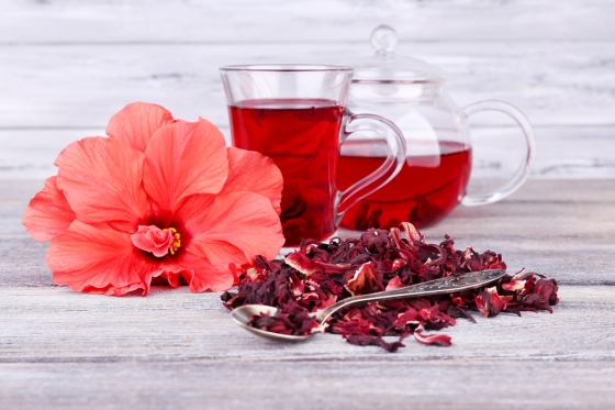 Hibiscus flower and extract