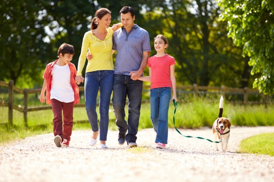 Family walking dog in park